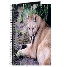 Cougar series 3 Journal