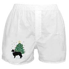 Yuletide Collie Boxer Shorts