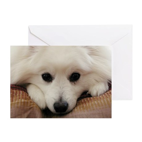 Get Well Greeting Cards (Pk of 10)