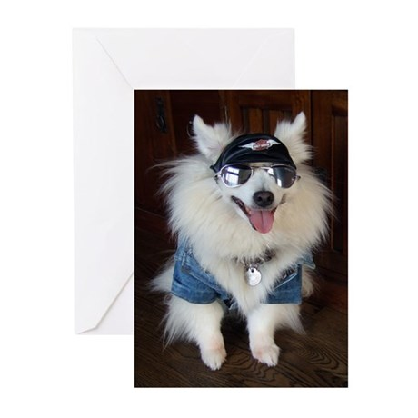 Born To Be Wild Greeting Cards (Pk of 10)