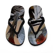 Haven Flip Flops