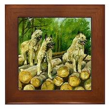 Belgian Laekenois Dog Framed Tile