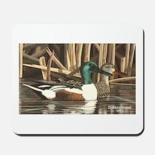 Shoveler Ducks Mousepad
