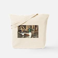 Shoveler Ducks Tote Bag