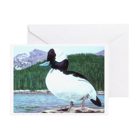 Bufflehead Duck Greeting Cards (6)