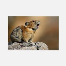 Pika Howling Rectangle Magnet