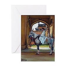 Marwari Horse Greeting Cards