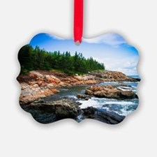 Acadia National Park Picture Ornament