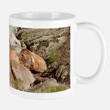 Petrified Wood Mug