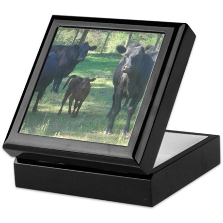 black angus Keepsake Box