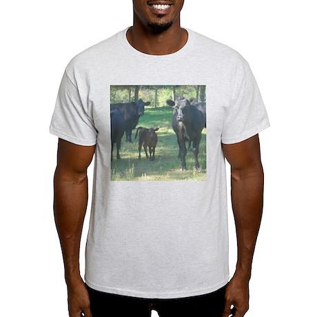 black angus Ash Grey T-Shirt