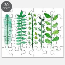 Rosemary, Thyme, Parsley, Sage, Basil, Herb Puzzle