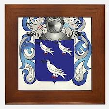 Nash Coat of Arms (Family Crest) Framed Tile