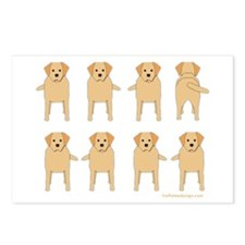 One of These Retrievers! Postcards (Package of 8)