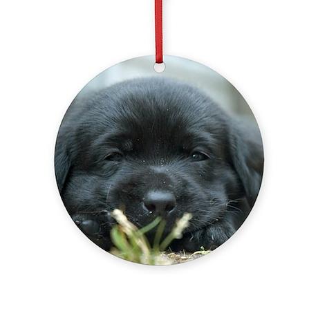 Back Lab Puppy Ornament (Round)