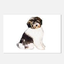 Tibetan Terrier (W) Postcards (Package of 8)