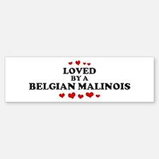 Loved: Belgian Malinois Bumper Bumper Bumper Sticker