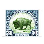 Antique 1923 U.S. American Bison Postage Stamp Pos