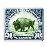 Antique 1923 U.S. American Bison Postage Stamp Mou