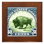 Antique 1923 U.S. American Bison Postage Stamp Fra