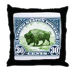 Antique 1923 U.S. American Bison Postage Stamp Thr