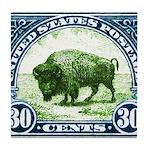 Antique 1923 U.S. American Bison Postage Stamp Til