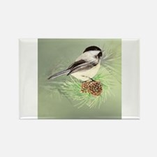 Watercolor Chickadee Bird in pine tree Magnets