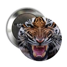 "Tiger Mad 2.25"" Button"