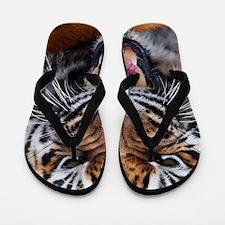 Tigers, Big Cat Football Flip Flops