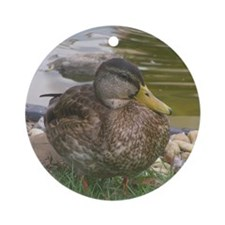 the duck Round Ornament