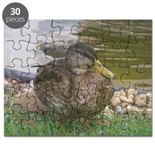the duck Puzzle