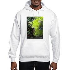 Fan palm Hoodie