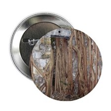 Strangler Fig Roots Button