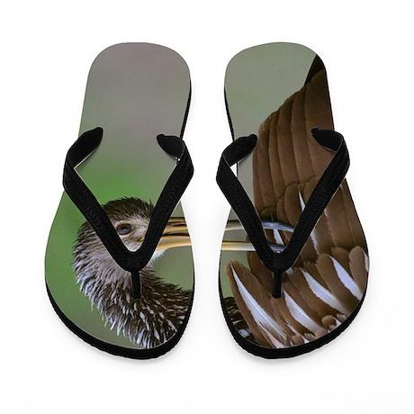 Limpkin Flip Flops