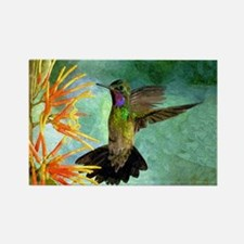 Hummingbird and Flowers Rectangle Magnet