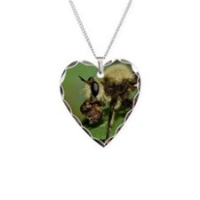 Robber Fly with Lunch Necklace Heart Charm