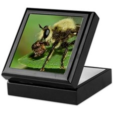 Robber Fly with Lunch Keepsake Box