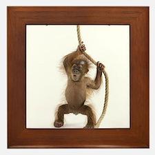 Hanging monkey Framed Tile