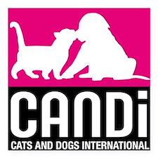CANDi Cats & Dogs International Logo Square Car Ma