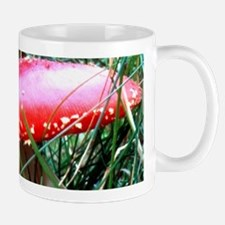 Fly-Agaric Mug