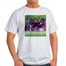 okapi 2 Ash Grey T-Shirt
