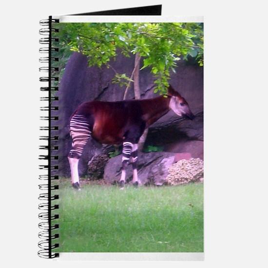 okapi 2 Journal