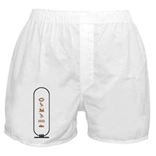 Roland in Color Boxer Shorts