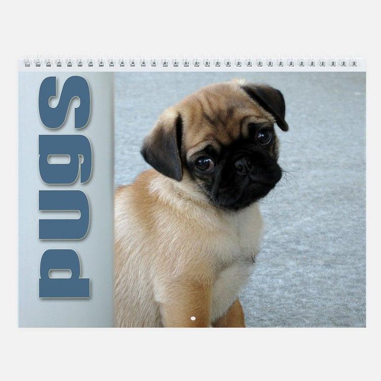 Pugs Wall Calendar