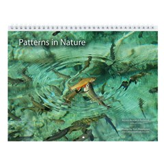 """""""Patterns in Nature"""" Wall Calendar"""