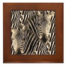 Optial Illusion Zebra Framed Tile