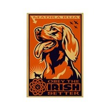 Obey the Irish Setter! Magnets (10 pack)