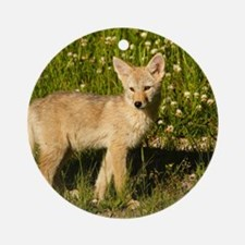 baby coyote Round Ornament