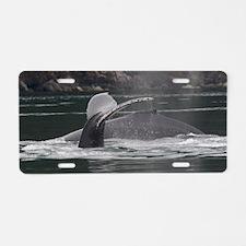 whales Aluminum License Plate