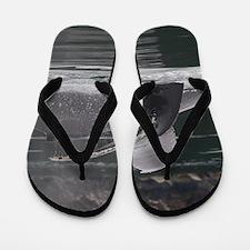 whales Flip Flops
